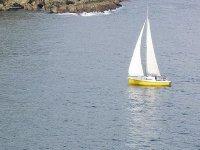 velero amarillo