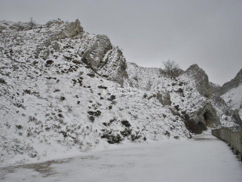 Terreno nevado