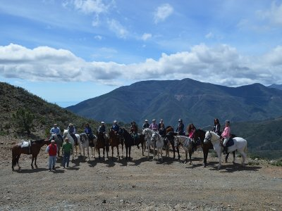 Horse-riding route at Marbella 60 minutes