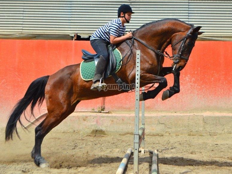 跳跃班--999-骑马课程