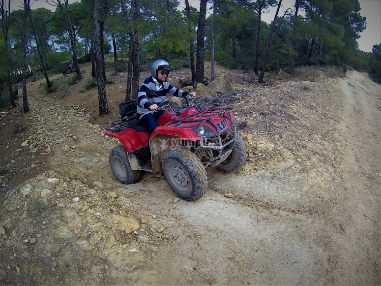 Quad through a forest route in Mallorca