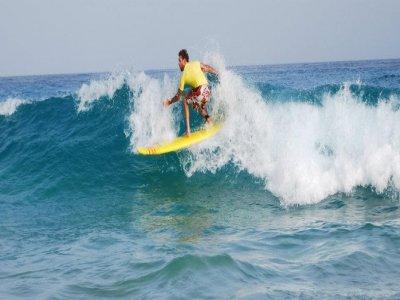Davinga Surf School Cursos