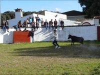 Huyendo de la vaquilla