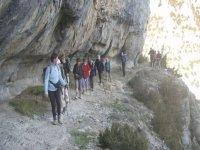grupo de personas realizando senderismo con palos