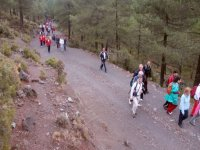 vista de un grupo caminando