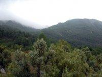 vista de un paraje natural