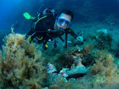 Immersion in Marine Reserve Mallorca + Gear