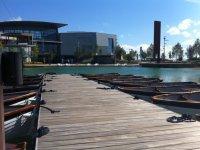 barcas al lado de un pase de madera