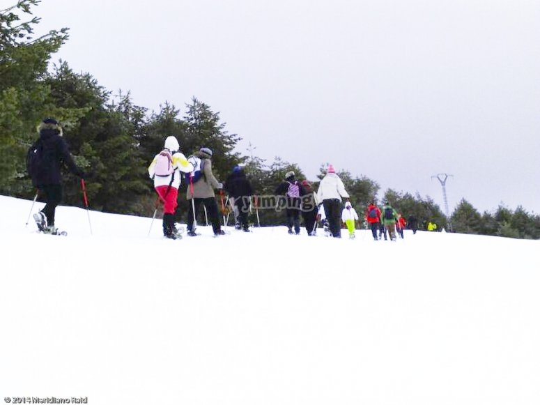 Snowrackets in groups