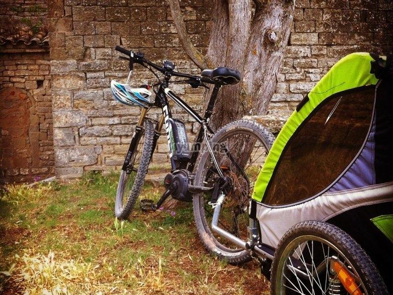 Bici con carrito apoyada en el arbol
