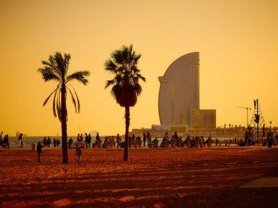 Visitare Tours Barcelona