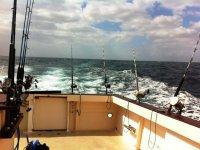 Cañas desde el charter de pesca
