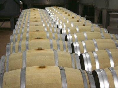 Hispania Wine&Adventure Enoturismo