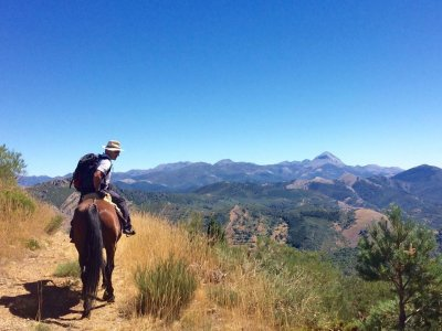 Horse Ride From River Morgoviejo & Forest 1h