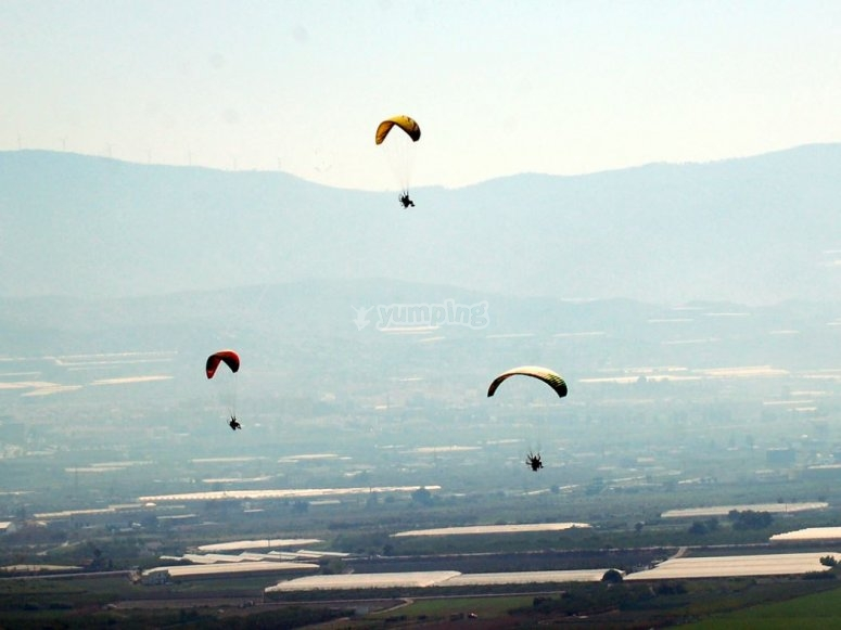 Some paramotors flying