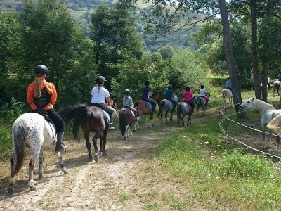 Horse Riding on a Farm from Vaillacarriedo 30Min