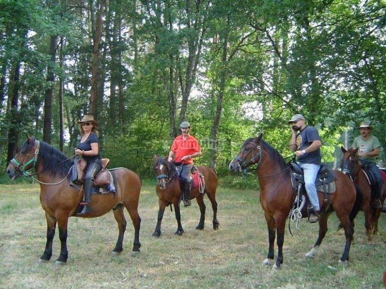 Paseo a caballo en Lugo