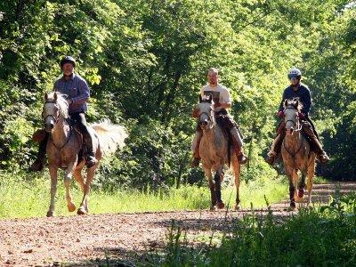 Ruta caballo A Pastoriza comida piscina y gymkana