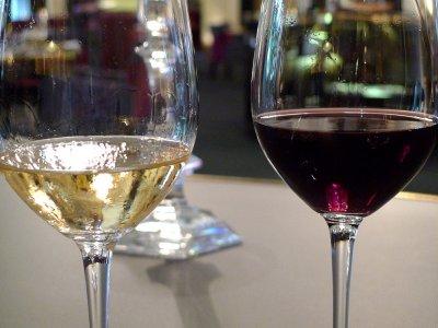 作者在塞哥维亚品尝葡萄酒和开胃酒