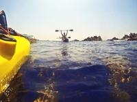 Navegando en kayak por una reserva natural