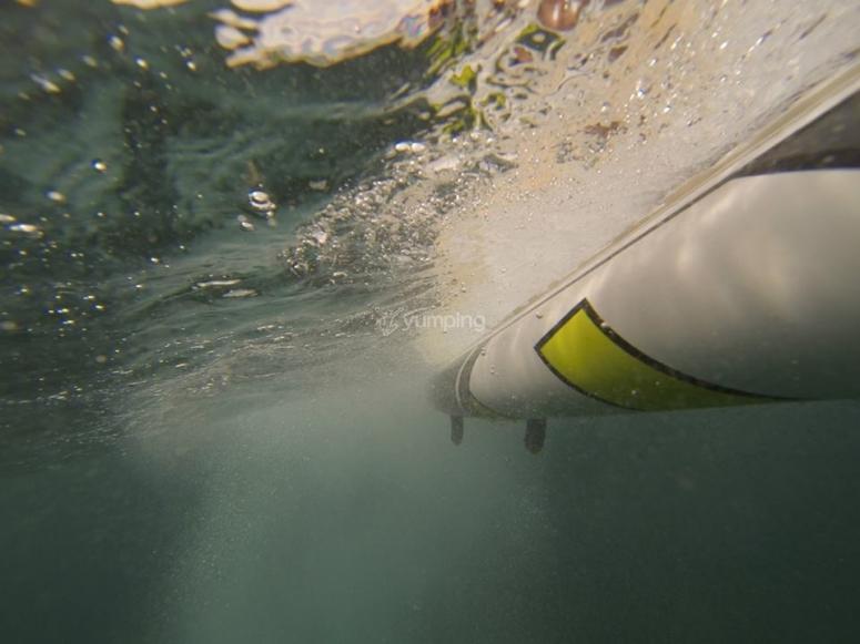 桨式冲浪桌的水下视图