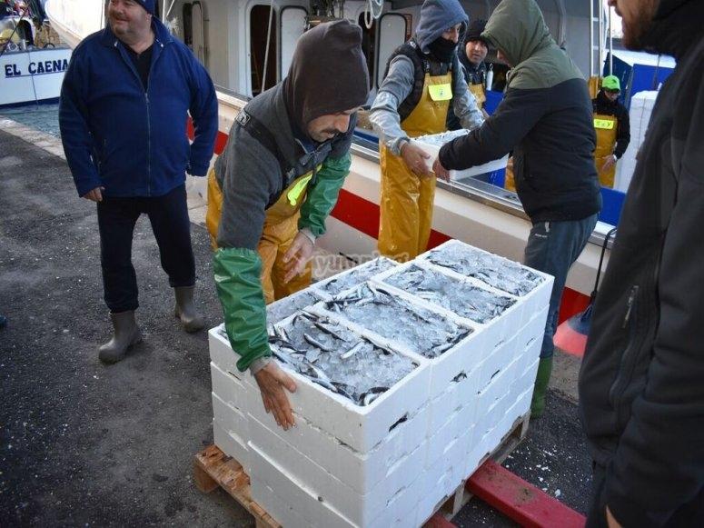 Incontro con il mercato del pesce