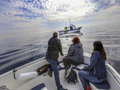 渔夫在托雷维耶哈度过了一天的经历