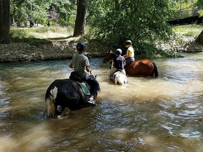 Horses crossing the waters
