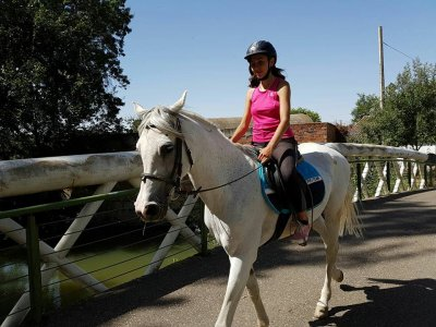Pack horse riding class and route, Palencia 1h
