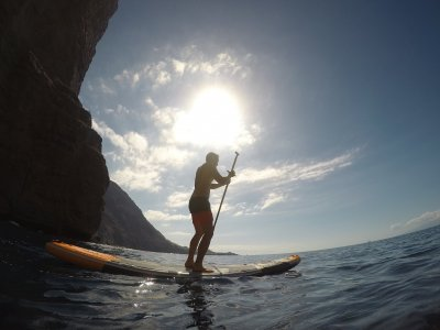 Paddle Board Rental in Tenerife