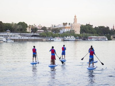 Paddle Surf Route in Guadalquivir 2 Hours