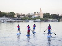 Paddle surf in Sevilla