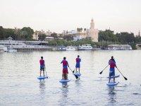 Ruta de paddle surf en el Guadalquivir 2 horas