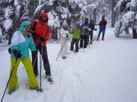 Come to try the snow rackets in Guadarrama