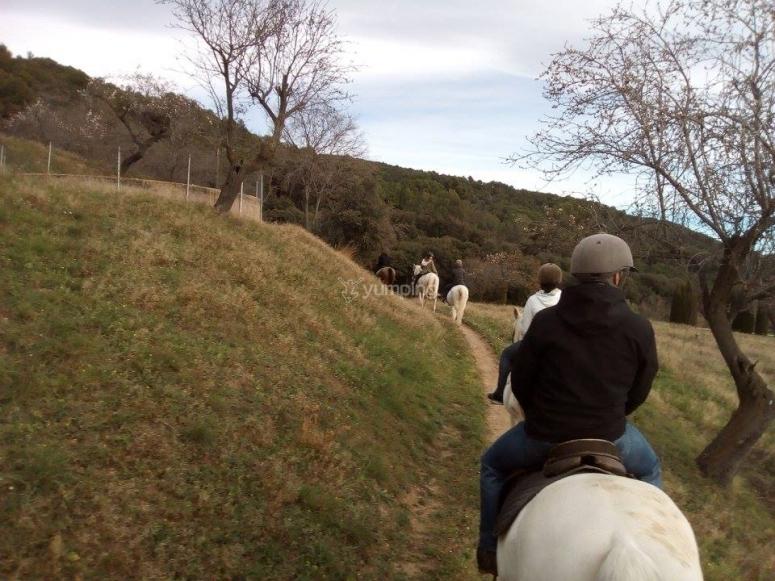在马背上穿过蒙塞尼