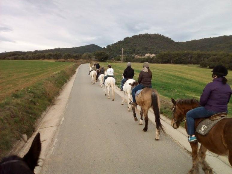 在马路上排马