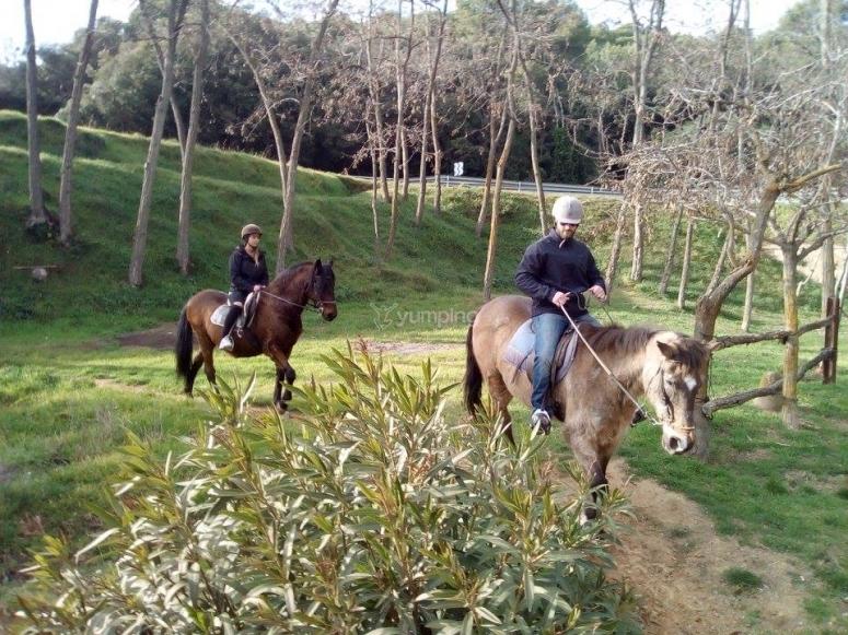 在巴塞罗那骑马--999-在巴塞罗那骑马--999-在Canoves骑马