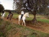 在马背上遇见蒙塞尼
