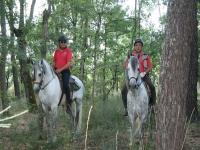 在树之间骑马