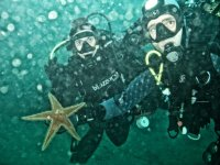 Con la estrella de mar