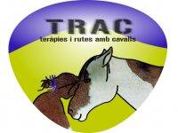 TRAC Terapies i Rutes Amb Cavalls Campamentos Hípicos