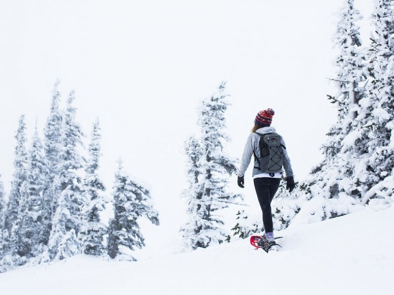Salida con raquetas de nieve