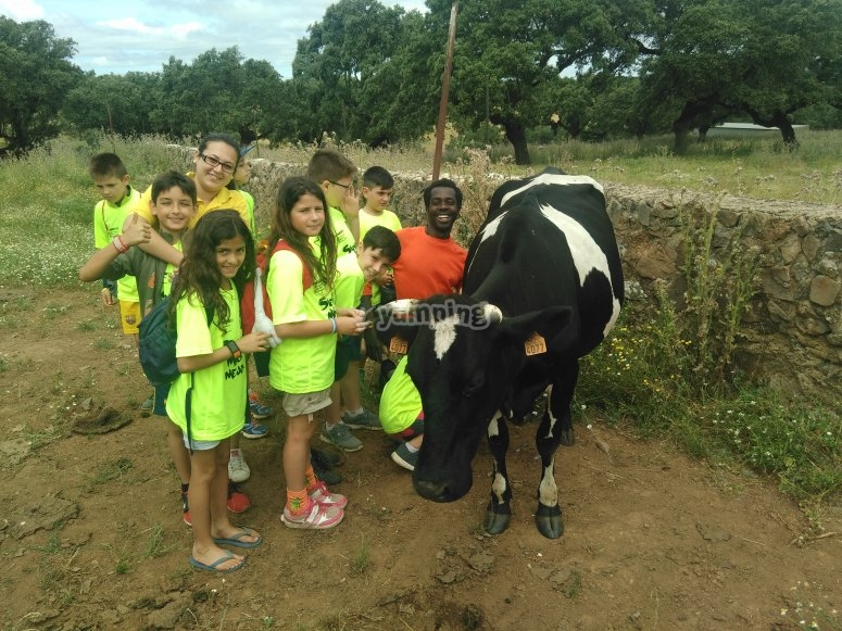 在我们的农场学习