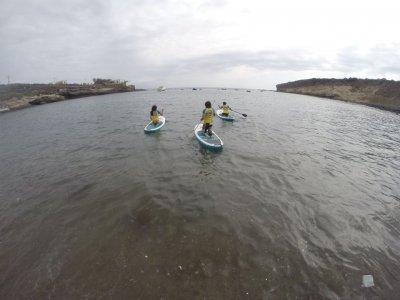 Excursión de paddle surf semiprivada en Arona 3h