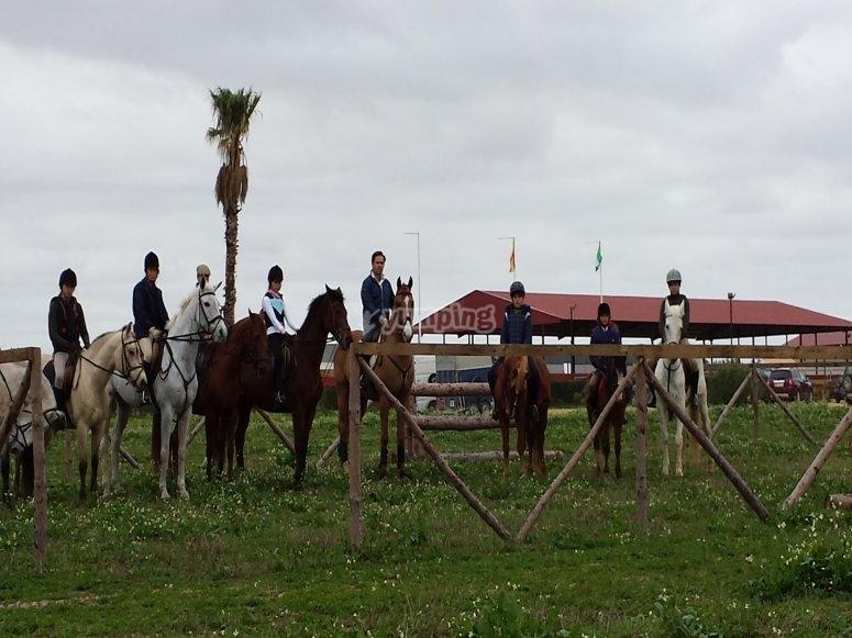 Aprende equitacion