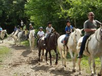 summer horse riding colonies
