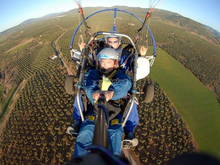Volare in paracadutismo sopra gli ulivi di Jaen