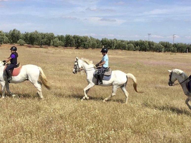 Salida a caballo por Utrera
