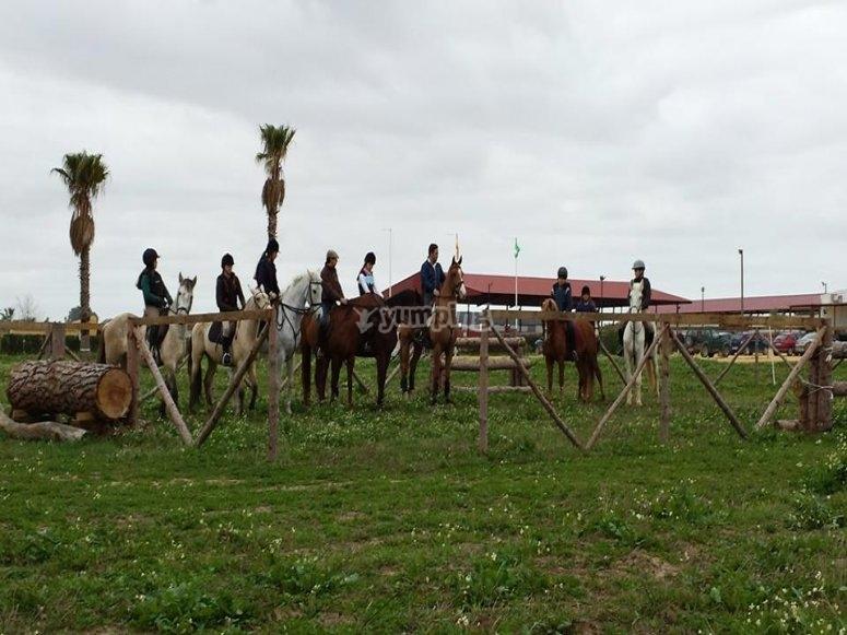 Ruta a caballo por Utrera