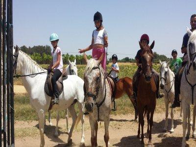 Paseo a caballo por Utrera 1 hora y 30 minutos